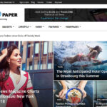 Newspaper Theme Review-Discover with WooCommerce Features | MsterBlog